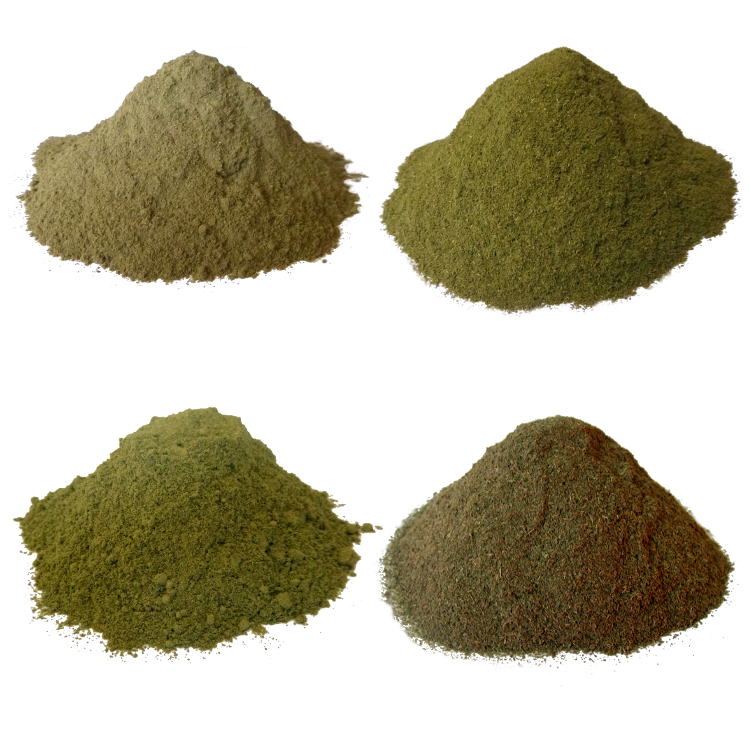 Kratom Strains Effects And Dosage Kratom Science