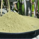 Kratom as a Harm Reduction Tool